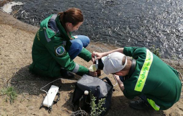 Отбор проб специалистами филиала ЦЛАТИ по Астраханской области.